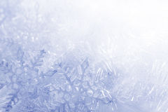 Płatka śniegu tło Obraz Stock