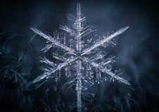 Płatka śniegu zbliżenia makro- symetria marznąca Obraz Royalty Free