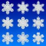 płatki śniegu Fotografia Stock