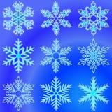 płatki śniegu inkasowy projekta elementów struktur mamy set Fotografia Royalty Free