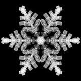 płatkiem śniegu Obrazy Royalty Free
