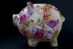 Płatniczy zarządzania prosiątka bank z świniowatymi kształta i euro billettes obrazy stock