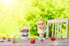 Płatowaty deser z malinką, truskawka, czarny kiwi, rodzynek, śmietanka i ciastka w szkłach, Zdjęcia Stock