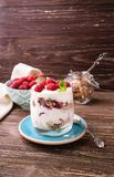 Płatowaty jogurt z malinkami zdjęcia royalty free