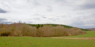 Płatowaty krajobraz: łąka i ogołaca deciduous zima las z wzgórzem z sosnowym lasem behind pod chmurnym niebem obraz stock