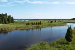 Płochy na jeziorze Fotografia Royalty Free