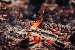 Płomień ognisko Zima camping Obrazy Royalty Free