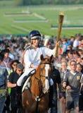 płomień olimpijski Zdjęcie Royalty Free