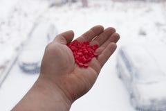 Płomienicy medycyna Czerwone pigułki w ręce Obraz Stock