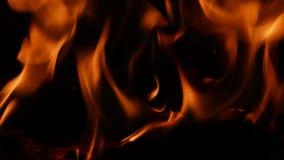 Płomienie, blaski zdjęcie wideo