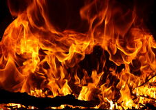 płomienie ognia Obraz Stock