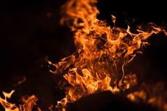 Płomienie ognisko przy nocą Obraz Stock