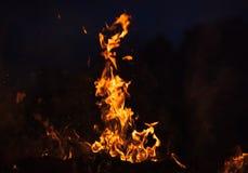 Płomienie ognisko przy nocą Fotografia Stock