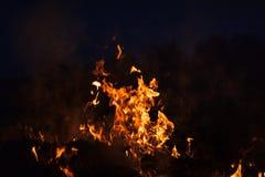 Płomienie ognisko przy nocą Fotografia Royalty Free
