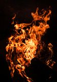 Płomienie ognisko przy nocą Zdjęcie Stock
