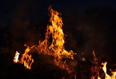 Płomienie ognisko przy nocą Obrazy Royalty Free