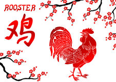 Płomiennego czerwonego koguta i orientalnej wiśni gałąź Zdjęcia Stock