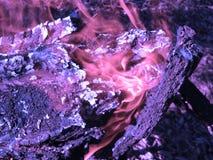 Płonąca łupka w graby zakończeniu up, węgla drzewnego tło zdjęcia royalty free
