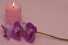 Płonąca świeczka i orchidea na tekstylnym tle z sercami obrazy royalty free