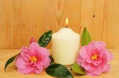 płonąca kameliowa świeczka kwitnie dwa Obraz Stock