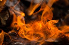 płonące świeczki dużo zdjęcie royalty free