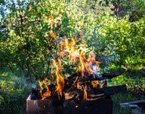 płonący brązownika drewno Silny ogień w grillu Fotografia Royalty Free