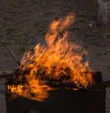 płonący brązownika drewno Silny ogień w grillu Zdjęcia Royalty Free