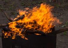płonący brązownika drewno Silny ogień w grillu Zdjęcie Royalty Free