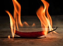 Płonący czerwony chili obraz stock