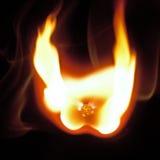 Płonący dopasowanie Fotografia Royalty Free