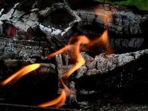 płonący drewna Zdjęcie Royalty Free