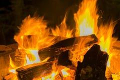 Płonący drewniany notuje dalej ognisko Fotografia Royalty Free