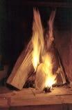 płonący drewno Obraz Stock