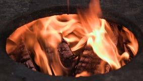Płonący drewno i węgiel Zakończenie Materiał filmowy klamerka 4K zbiory