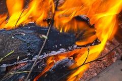 Płonący drewno, zamyka up zdjęcia royalty free