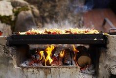 płonący grilla mięsa drewno Fotografia Stock