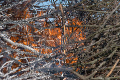 Płonący ogień Zdjęcie Royalty Free