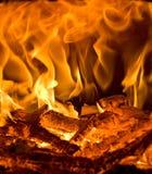 płonący ogień Obraz Royalty Free