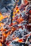 Płonący ogień i embers Obrazy Stock