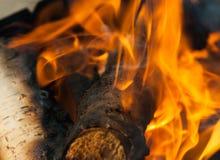 płonący ogień z drewna Zdjęcia Royalty Free