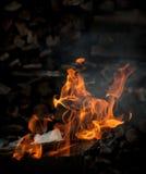płonący ogień z drewna fotografia royalty free