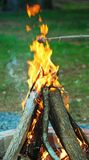 płonący ognisko Obrazy Stock