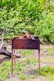 Płonący płomienia ogień w brązowniku na naturze Obrazy Royalty Free