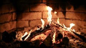 Płonący płomienia ogień w grabie swobodny ruch zdjęcie wideo