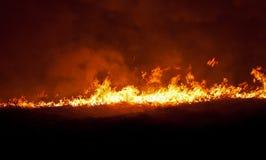płonący pole Zdjęcia Stock