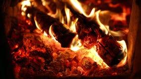 Płonący węgiel drzewny w grillu zbiory wideo