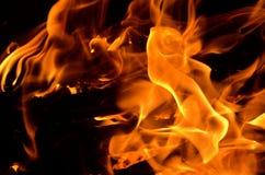 płonie ogień Zdjęcie Stock
