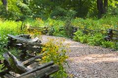 płotowi ścieżki wildflowers fotografia stock