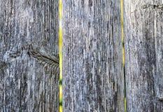 płotowi lata łąkowi słoneczniki drewniane Fotografia Stock