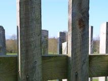 płotowi lata łąkowi słoneczniki drewniane zdjęcia royalty free